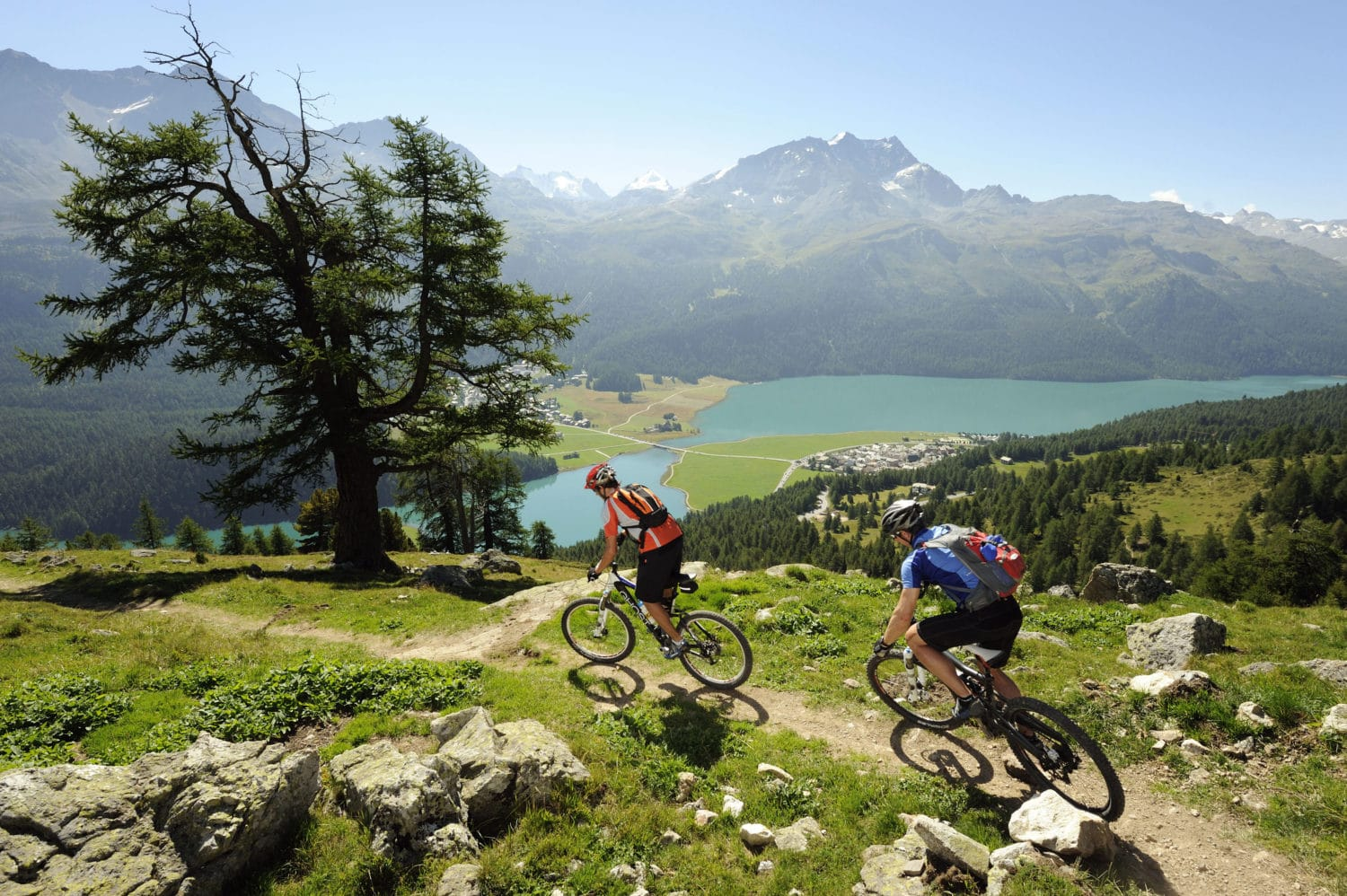 ENGADIN ST. MORITZ - Mountainbiker auf dem Padella-Corviglia-Panoramatrail, im Orchas-Gebiet, unterhalb von Piz Albana. Blick auf Silvaplana, Champferer und Silvaplaner See, Silvaplana-Surlej und Berge Piz San Gian (3134 m), Piz Surlej (3188 m), Munt Arlas (3127 m), Fuorcla Surlej (2755 m), Piz Murtel (3433 m) und Piz Corvatsch (3451 m). Mountainbiker sul trail panoramico Padella-Corviglia,-Panoramatrail nella zona di Orchas, ai piedi del Piz Albana. Vista sui laghi di Silvaplana, Champfer e Silvaplana, Silvaplana-Surlej e le montagne Piz San Gian (3134 m), Piz Surlej (3188 m), Munt Arlas (3127 m), Fuorcla Surlej (2755 m), Piz Murtel (3433 m) e Piz Corvatsch (3451 m). Mountain biker on the Padella-Corviglia Panorama Trail, in the Orchas region, below Piz Albana. View of Silvaplana, Lake Champfer and Lake Silvaplana, Silvaplana-Surlej and the mountains Piz San Gian (3,134 m), Piz Surlej (3,188 m), Munt Arlas (3,127 m), Fuorcla Surlej (2,755 m), Piz Murtel (3,433 m) and Piz Corvatsch (3,451 m). Copyright by: ENGADIN St. Moritz By-line: swiss-image.ch/Ralf Glaser