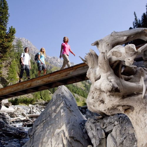 ENGADIN St. Moritz - Gruppe am Wandern im Val Trupchun im Schweizer Nationalpark.  Group hiking in the Val Trupchun, Swiss National Park.  Gruppo in passeggiata in Val Trupchun, nel Parco Nazionale Svizzero.  Copyright by ENGADIN St. Moritz By-line:swiss-image.ch/Christof Sonderegger